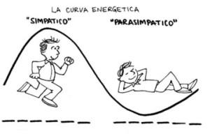 curva-energetica